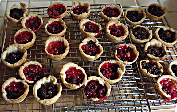 Berry Picking and Tart Making